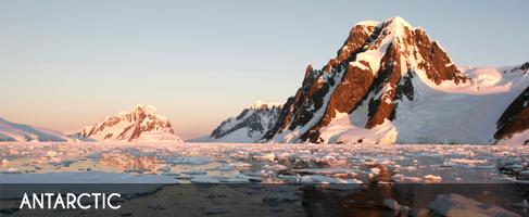 Vignette-antarctic