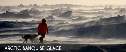 Vignette-arctic-banquise-glace